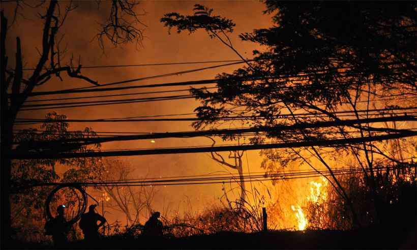 Bombeiros combatem chamas na Grande BH, região de Minas que concentra o maior número de focos (foto: Marcos Vieira/EM/DA Press - 31/7/19)