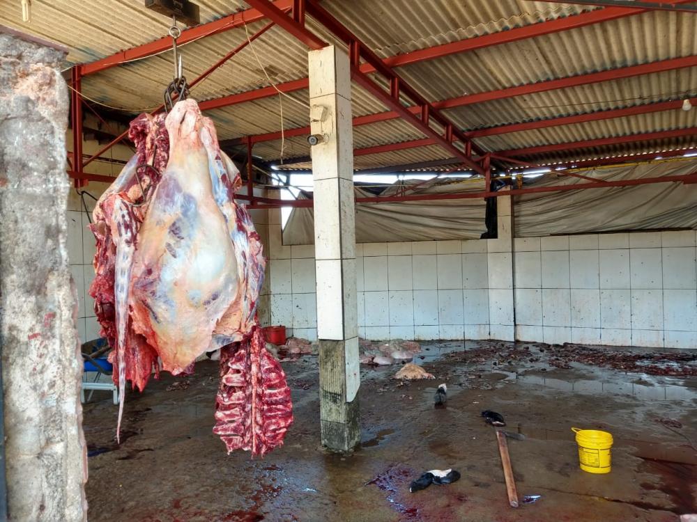 As atividades do matadouro foram suspensas e o dono foi autuado em aproximadamente R$ 43.000,00